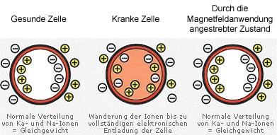 Schaubild zur Wirkungsweise der Magnetfeldanwendung
