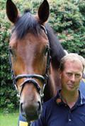 Magnetfeldtherapie bei Pferden